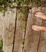 flipfop feet